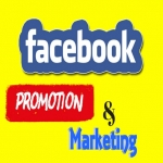 Provide Face Book Fans Promotion And Marketing